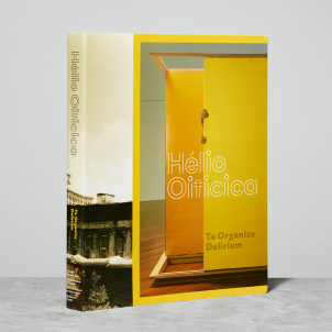 Helio Oiticica: To Organize Delerium Catalogue- Paperback
